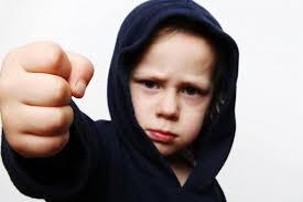 دانلود دانلود مقاله کارگاه کنترل خشم